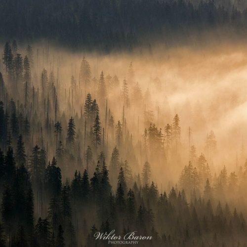 Fotoobraz Góry Karkonosze