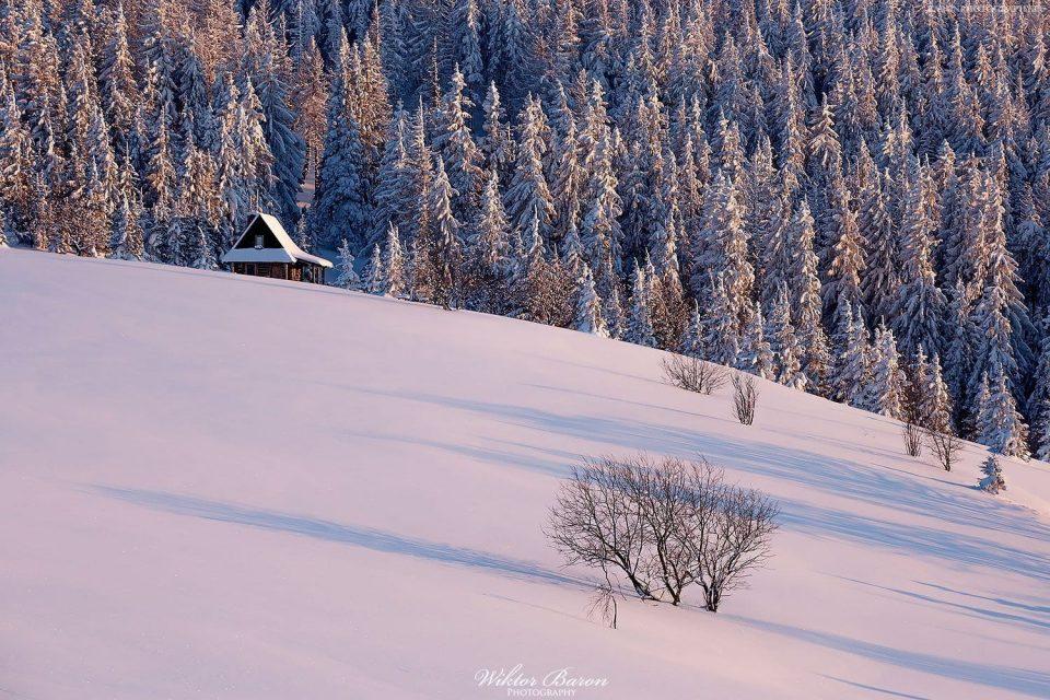 Gorc - zima na polanie Gorc Kamienicki