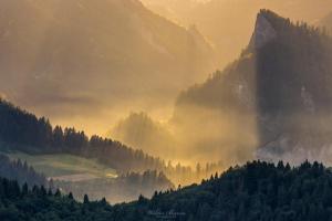 Widok na Sokolicę z Wysokiego Wierchu w Pieninach