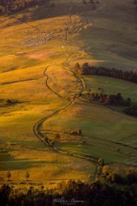 Pastwiska w Beskidzie Sądeckim