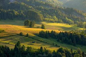 Łąki w Pieninach Małych