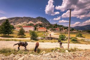 Leskovik – miasto w Albanii, w obwodzie Korcza.