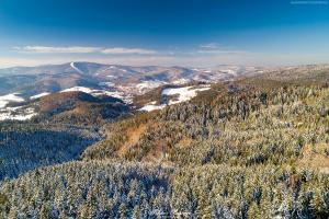 Widok na Jaworzynę Krynicką z okolic góry Bradowiec