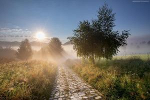 Droga do Piwnicznej - Beskid Sądecki