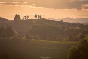 Pola w Przysietnicy - Beskid Sadecki (1)