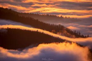 Widok na soki Jasienia skąpane w jesiennych mgłach.