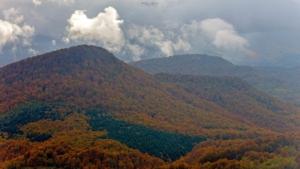 Jesień w Karpatach