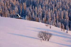 Polana Gorc Kamienicki Zimą