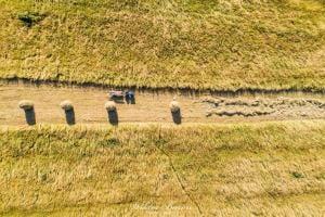 Sianokosy w Gorcach (1)