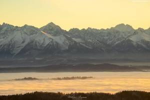 Widok z Gorca na Tatry