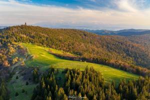 Widok na polanę Gorc Kamienicki i sam szczyt Gorca