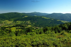 Widok na Beskid Wyspowy z polany Jaworzynki w Gorcach