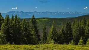 Widok na Tatry z polany Gorc Troszczański