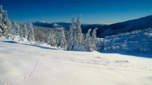 Łabska dolina zimą.