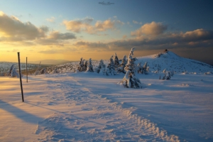Widok z Mokrej Przełęczy na Szrenice
