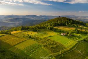 Łąki i pastwiska na Koziarzu