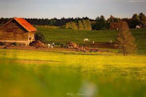 Stare gospodarstwo na Mazurach