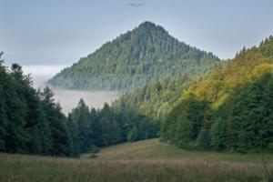 Nowa Góra z Przełęczy Szopka
