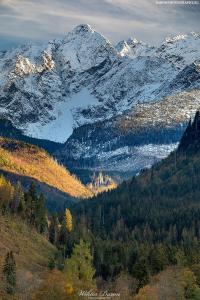 Jaworowa Dolina