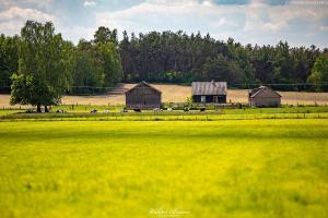 Domek na Mazowszu