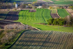 Ponidzie - Fotografia Krajobrazowa (8)