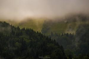 Widok z Przełęczy Oślak